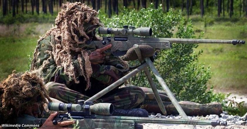 Сможете ли вы найти снайпера на этих 14 фото?