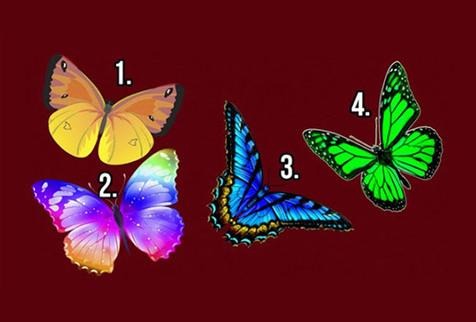 Нажмите на бабочку, которая вам приглянулась и узнайте тайны своей души