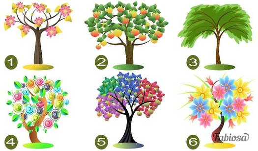 Тест: Выберите дерево, и мы расскажем тайны вашей личности!